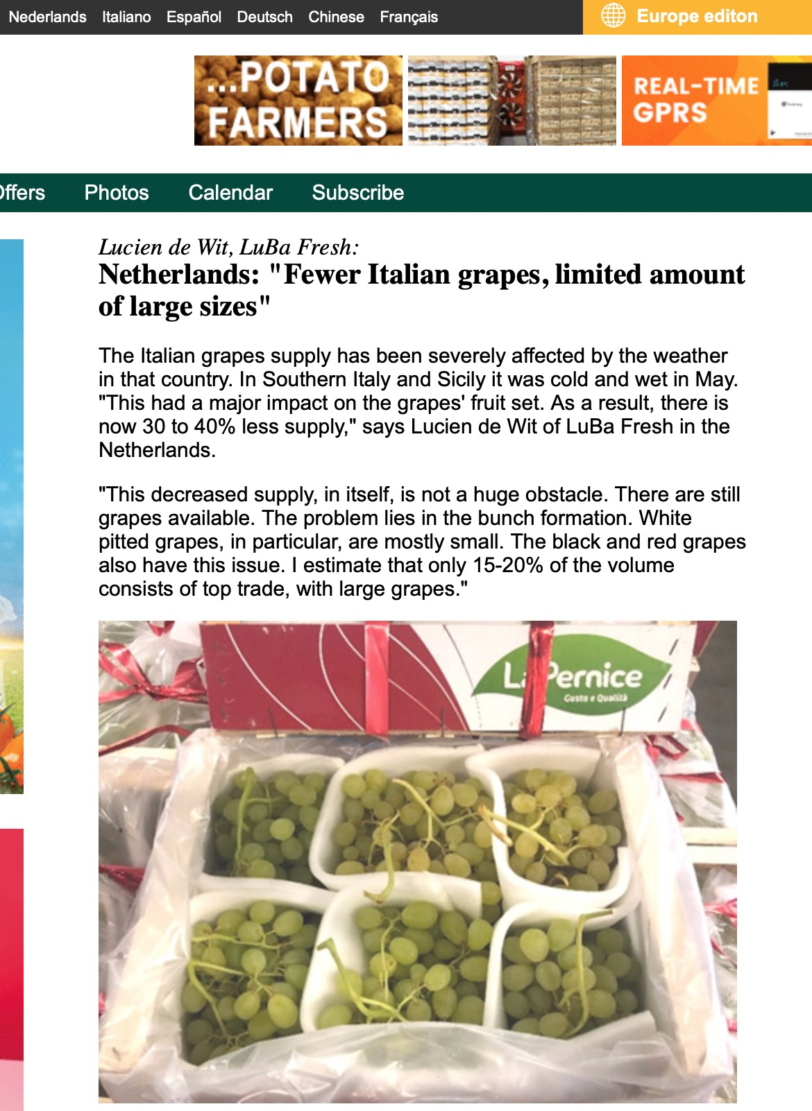 "Amount Deutsch 22.08.2019 ""fewer italian grapes, limited amount of large"